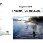 Faszination Tideelbe – BUND Hamburg e.V.